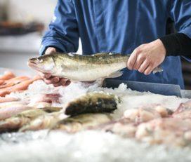 Fischmarkt Luzern